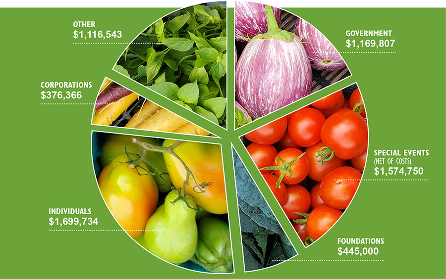 NYRP 2020 Operating Revenue Pie Chart $6,382,200