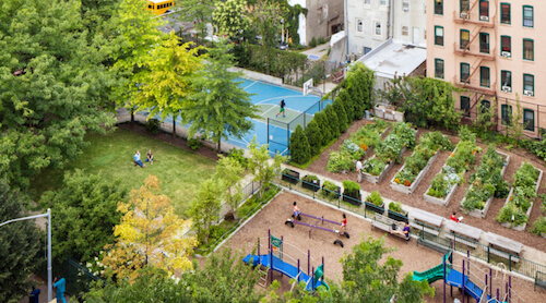 aerial shot of community garden