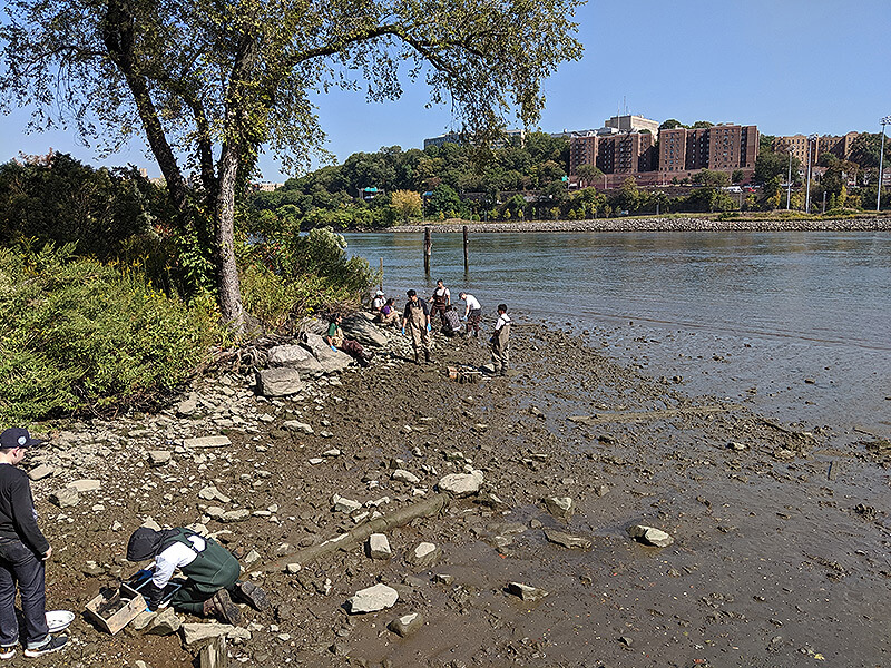 students taking scientific samples on the harlem river