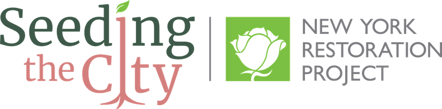 Seeding the city logo